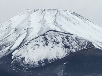 富士山のふもとのアップ